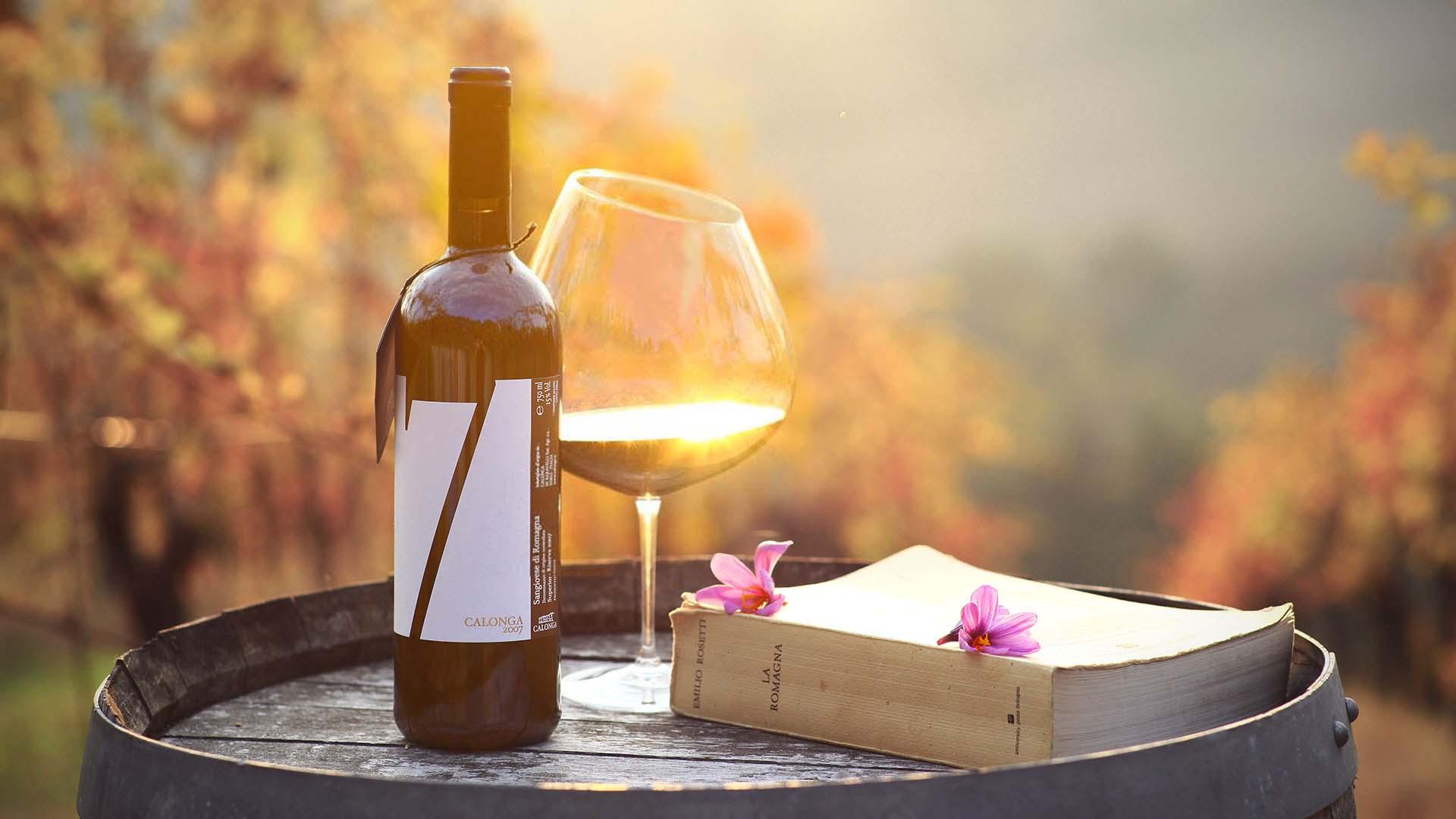 Calonga, azienda agricola, Forlì, vinicoltura, sangiovese, albana, pagadebit, vino, viti, filari, Baravelli, michelangelo, castellione, 7, kiria, leggiolo, ordelaffo, baldan